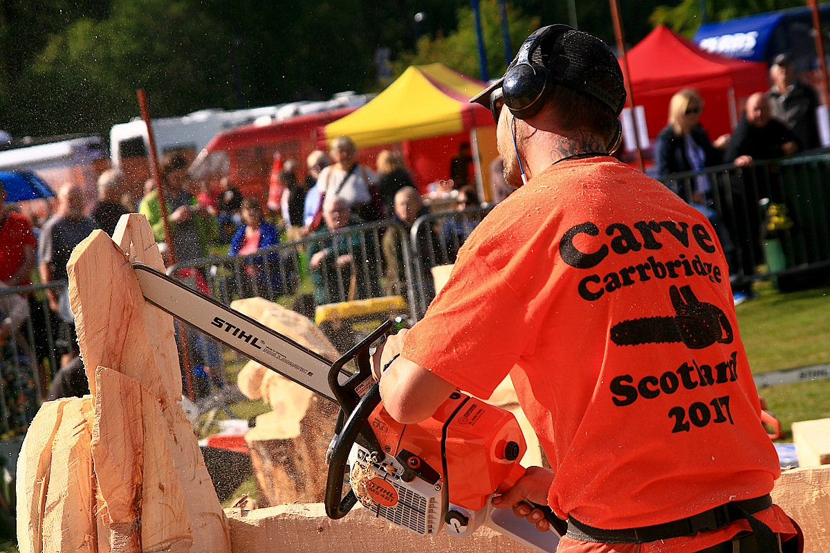 Carve carrbridge u scottish open chainsaw carving competition