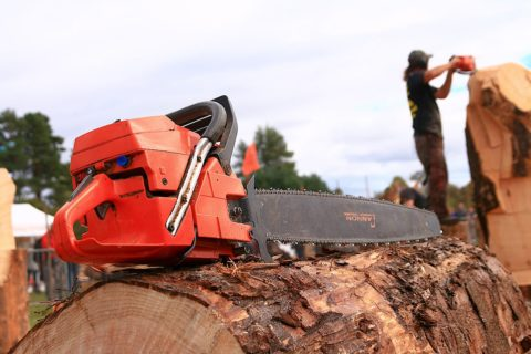 Carve Carrbridge chainsaw ready to go